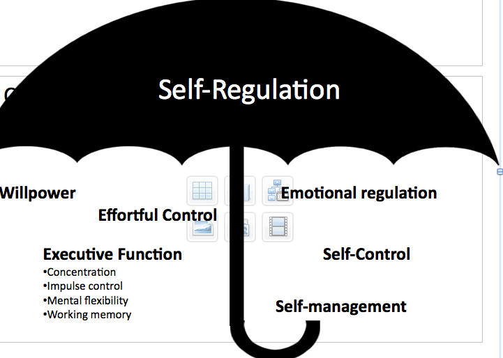 Self Regulation And Toxic Stress Report >> Report Of The Early Childhood Collaborative Action Network Cradle
